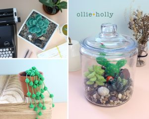 Ollie Holly Amigurumi Crochet Succulents Collection